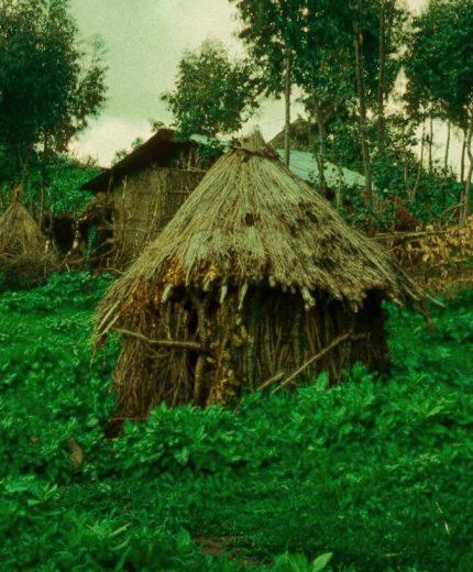 Niddah-Hut-430x520.jpg